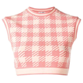 Pink Checked Top.png